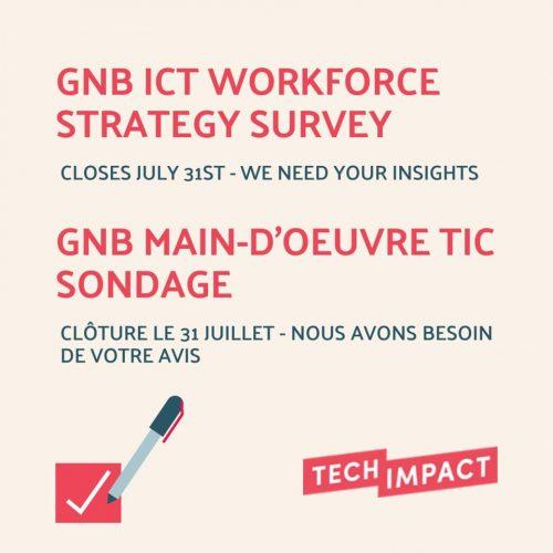 Survey on IT workforce
